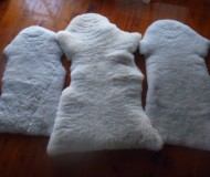 Milky Lambs Baby Rugs