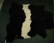 Thin Black Belty